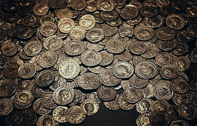 Wild Boars Help Uncover Medieval Coins in Slovakia