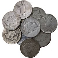peace silver dollar cull common