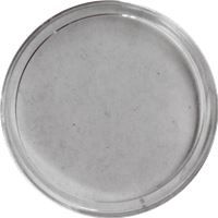 plastic coin capsule fits silver